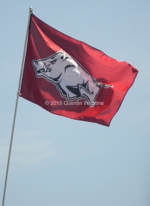 Quentin Winstine An Arkansas Razorback flag waves in the wind before the game against the Toledo Rockets at War Memorial Stadium in Little Rock on Saturday, September 12, 2015.